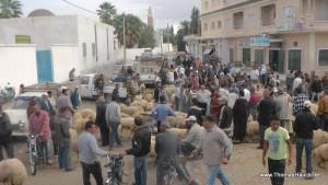 Tunesien_261