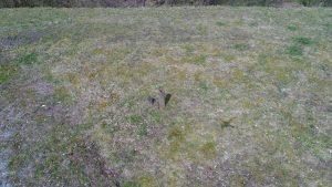 Geocaching mit Drohne