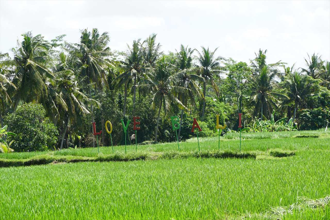 Kemenuh Bali
