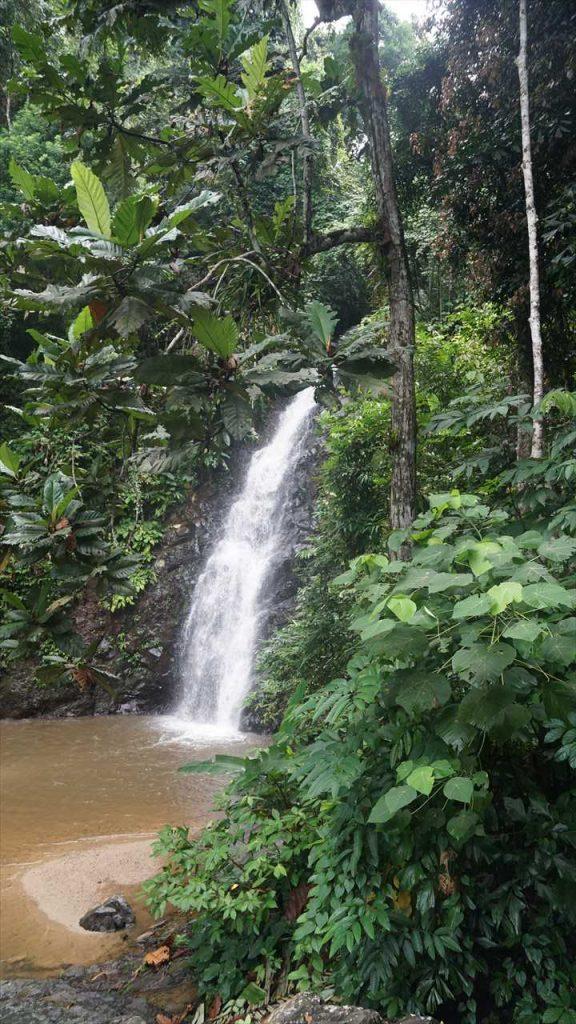 Wasserfälle auf Langkawi