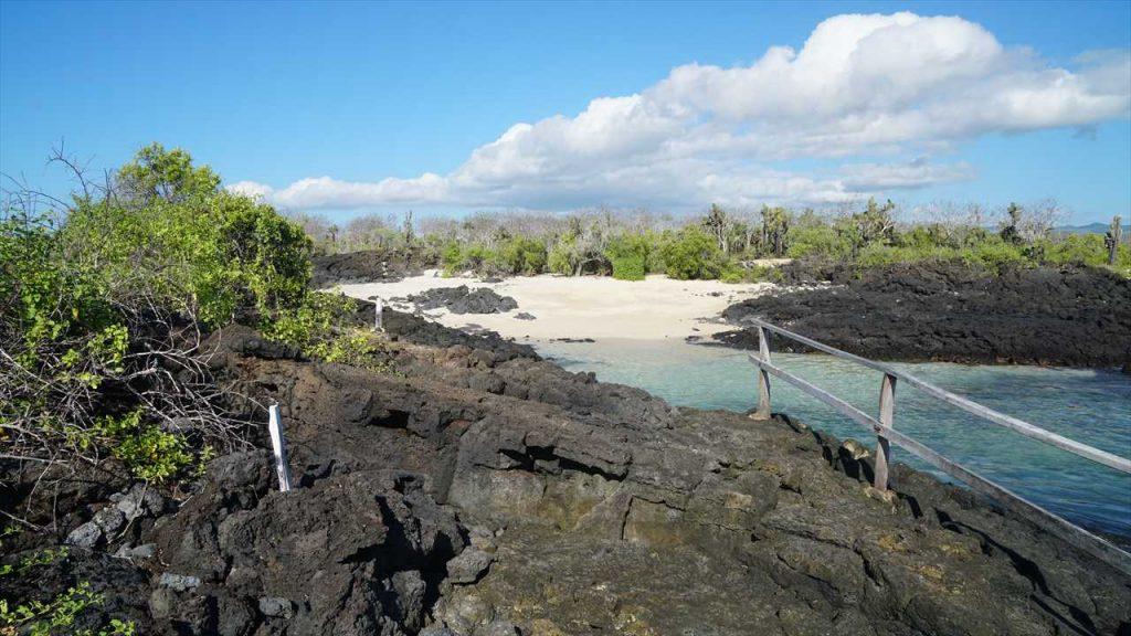 Eden Island Santa Cruz