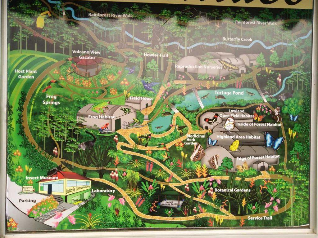 Arenal Plan Butterfly Garden