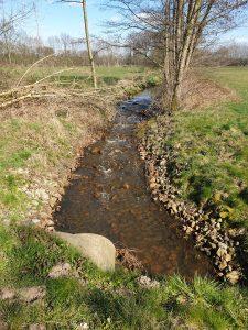 Naturschutzgebiet Feuchtgebiet Saerbeck